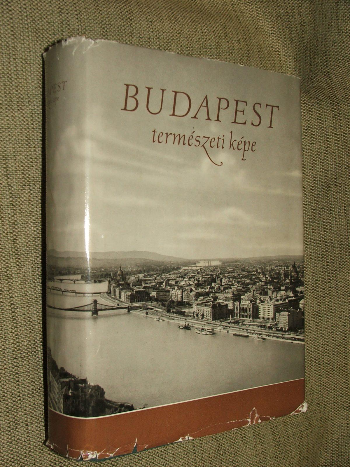 PÉCSI Márton: Budapest természeti képe